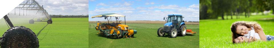 Instant Lawn, Adelaide, Adelaide Hills, Riverland